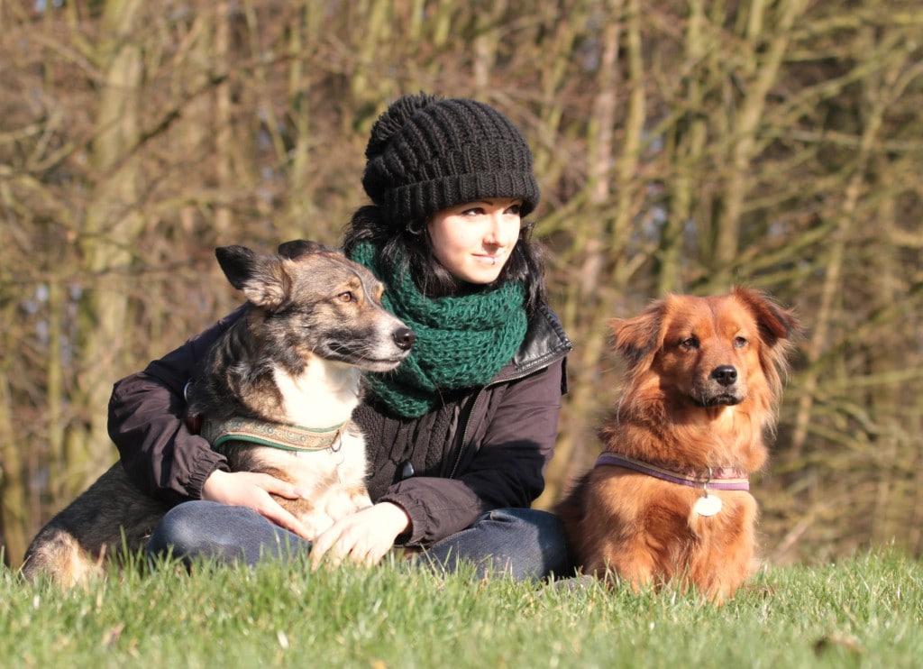 Fellfreunde Über Fellfreunde e.V. Tiervermittlung