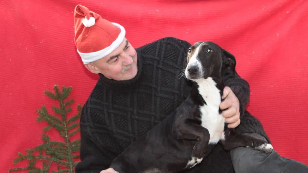 Weihnachtliche Hundekekse – 2. Advent