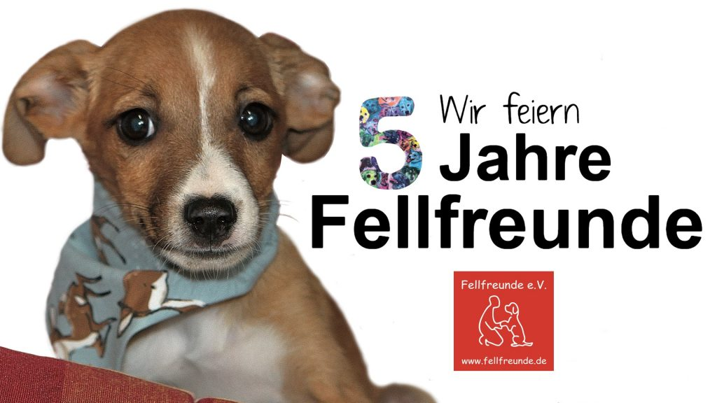 Fellfreunde Fellfreunde feiern ihren 5. Geburtstag